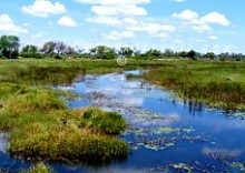 1. WORLD FAMOUS OKAVANGO DELTA - THE WORLD'S LARGEST INLAND DELTA