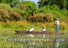 3. SPECIALIZED BOTSWANA WATER-BASED SAFARI ACTIVITIES