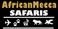 AfricanMecca Safaris